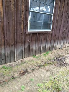 This is what wood siding does when it's in contact with soil. It absorbs the moisture from the soil, causing it to rot. This can attract termites.